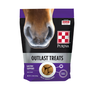 Purina Outlast Horse Treats Bag