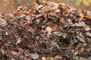 a pile of compost leaves