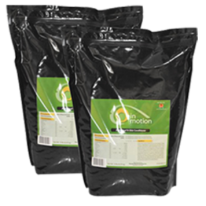 Sunglo In Motion Show Supplement
